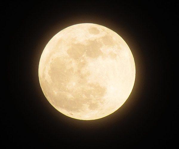 moonlight 月の神秘