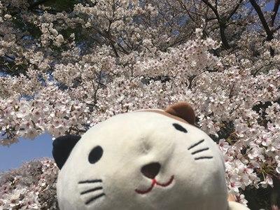 昭和記念公園,ゴマ2