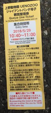 上野動物園,パンダ