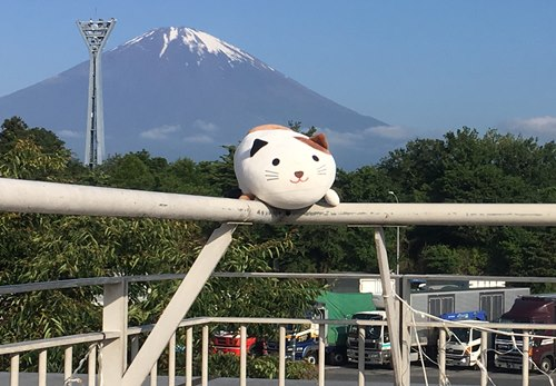 足柄サービスエリア,富士山