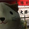 大勝軒,武蔵高萩店