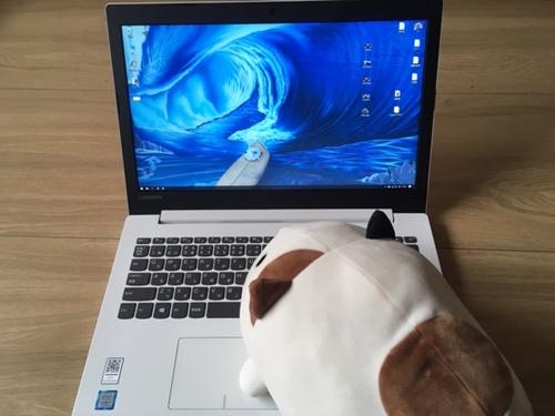 ノートパソコン,ぺいぺい