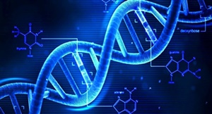 dna,遺伝子